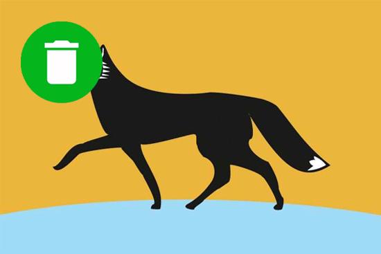 Тарифы на вывоз мусора в Сургуте 2019